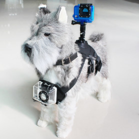 Pet Harness with Support for Sports Camera KSIX Black KSIX - 1